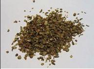 oregano essential oil extraction